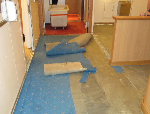 Seamless Flooring
